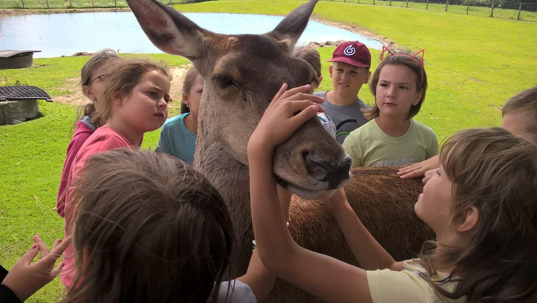 wakacje 2020. obóz dla dzieci w Janczarach